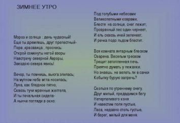 Ein Beispiel für die Analyse des Gedichts, wie das Gedicht Analyse zu machen