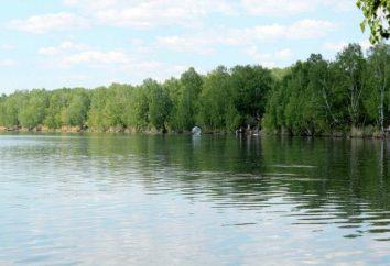 Lac Linevo (région de Kourgan) – un excellent endroit pour la chasse et la pêche