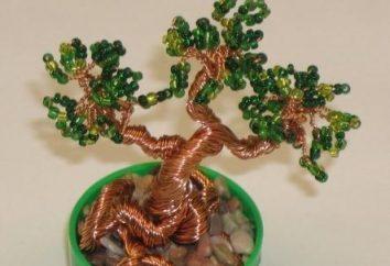 Come fare un albero di denaro da perline con le mani?