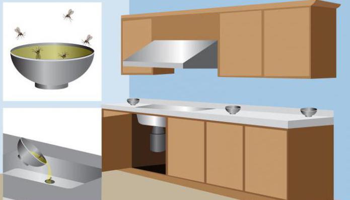 moucheron evier bonnes habitudes pour dire au revoir aux ongles disgracieux le compost au. Black Bedroom Furniture Sets. Home Design Ideas