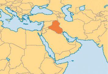 I motivi per l'invasione delle forze Usa in Iraq. La cronaca delle operazioni militari degli Stati Uniti, le perdite in Iraq