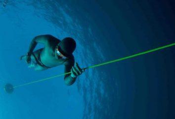 Plongée profonde: les réalisations les plus importantes de l'histoire de