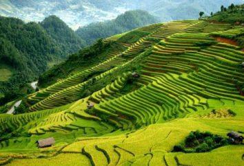 Vietnam em janeiro: o clima, resorts, comentários de viajantes