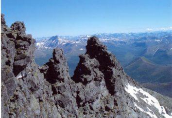 Les espaces naturels de l'Oural: la table et une description