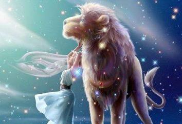 Oroscopo. Compatibilità del leone maschio e della virgola femminile