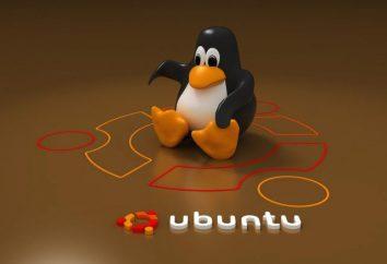 Co jest lepsze – Xubuntu i LUBUNTU? Liczba specjalistów