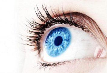 Der Ziliarkörper (Ziliarkörper): Struktur und Funktion. Fahr Augen