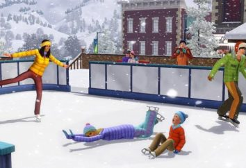 """Spiele auf dem Ergebnis, oder wie in """"The Sims 3"""" Bedürfnisse zu deaktivieren?"""