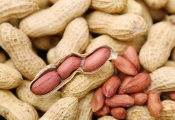 Peanuts: valor nutritivo, nutrientes, calorias
