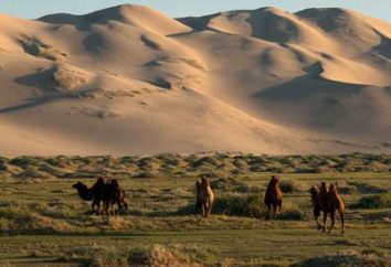 Il deserto del Gobi – inaccessibile e bella