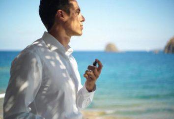 Estimados perfume de los hombres – su mejor opción o simplemente un desperdicio de dinero?