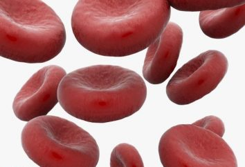 Indice de couleur du sang: le concept, le calcul et l'interprétation des résultats