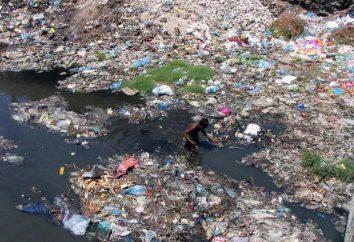 Calcul des dommages environnementaux: méthodologie, par exemple. Calcul des dommages environnementaux évités
