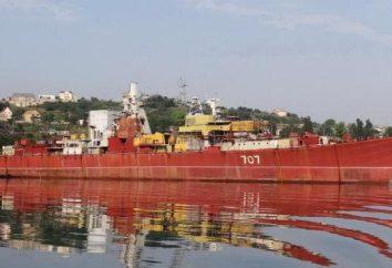 Russo Flotta del Mar Nero: la composizione e l'elenco delle navi