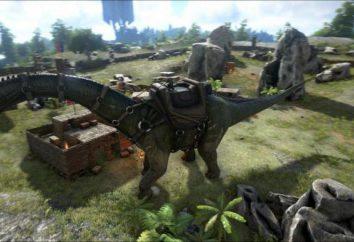 ARC: comandos de console e recursos do jogo