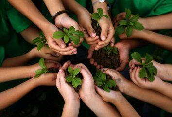 """ensayo """"problema ambiental"""" para las clases de menores y mayores"""
