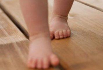 Informações sobre quando as crianças começam a andar