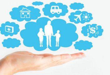 companhia de seguros – o que é isso? Estrutura e Função