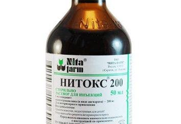 """""""Nitoks"""" pour les animaux: les instructions. Médicaments vétérinaires « Nitoks 200 »"""