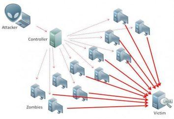 DDoS-Angriff: Wie zu machen? Das Programm für DDoS-Attacken