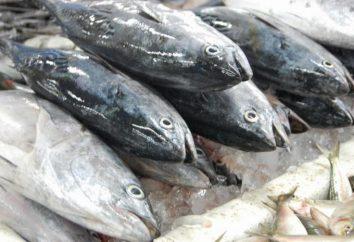 Cela peut annoncer le poisson frais? Revez vous aider à trouver la réponse à cette question!