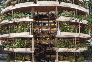 IKEA a créé le « jardin intérieur » pour les résidents urbains