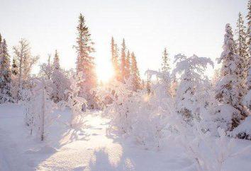 """""""Weranda Park"""" ośrodek narciarski: adres i opinie"""
