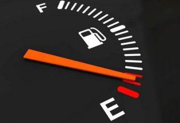 """L'economia di combustibile su una vettura con le mani. """"Ecotop"""" con le proprie mani"""