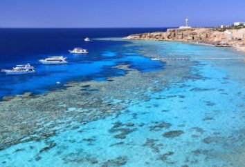 Mar Beach Resort & Aqua Park 4 * (Egipto / Sharm El Sheikh) – fotos y comentarios