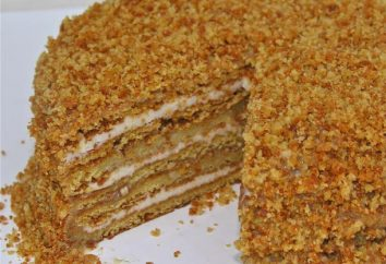 La ricetta più semplice per la torta di miele