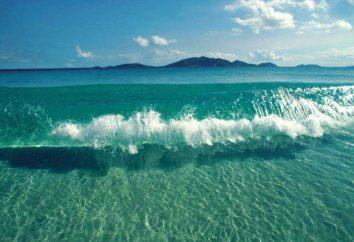 Jakie jest najgłębsze morze na świecie?