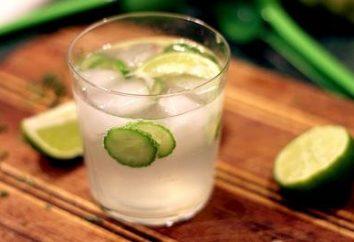 Cosa bere gin, e da dove veniva?