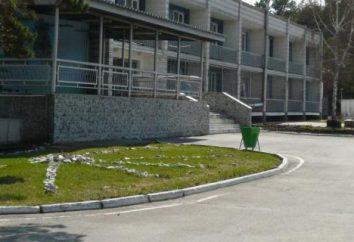 """Erholungszentrum """"Blue Lake"""" (Berdsk, Novosibirsk Region.): Rest, Preise und Bewertungen"""