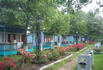 """Le centre de loisirs """"White Swan"""", Dzhemete"""