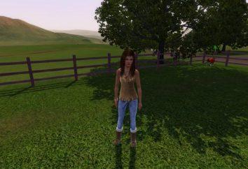 """Come inserire il codice in """"The Sims 3""""? Codici """"The Sims 3"""" su un animale domestico, una sirena o di abilità"""