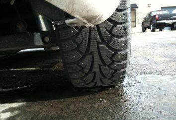 Les pneus d'hiver Hankook i Pike RS W419: commentaires