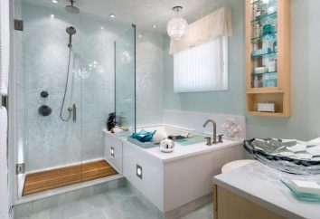 Torneiras do banheiro Vidima: revisão e feedback dos clientes