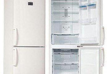 Frigorífico LG GA B409UEQA – aparelhos de qualidade para a cozinha