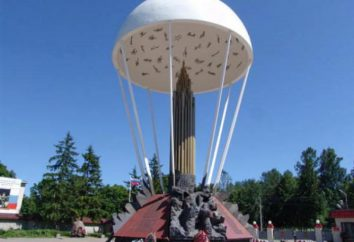 104 Airborne Division: história, composição, comando e comentários