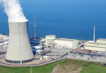 Przemysł jądrowy Rosji: sfery działalności, główne kierunki i zadania