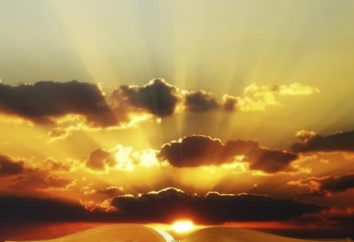 Genesis: projektowanie książki i obietnice