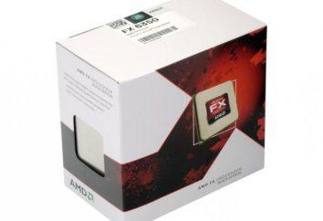 AMD FX-6350 (procesor) specyfikacje, przegląd i informacje zwrotne