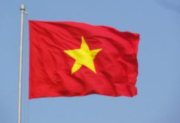 Modernes Vietnam Flagge und seine Varianten historische