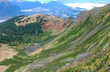 La composition et les propriétés des écosystèmes. écosystème