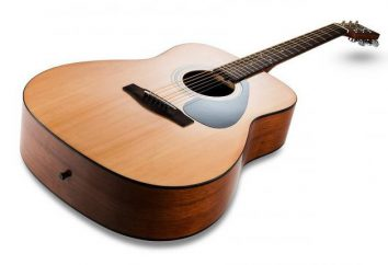 Chitarra Yamaha F310: recensioni. Corde per chitarra acustica Yamaha F310