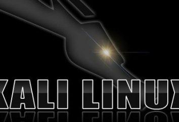 Kali Linux: instalação em uma unidade flash USB. instruções curtas