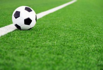 reglas del fútbol: resumen. Reglas de Juego