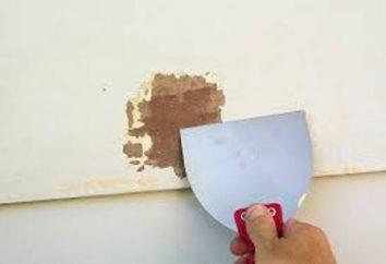 Retrait de l'ancienne peinture des murs: Méthodes et outils