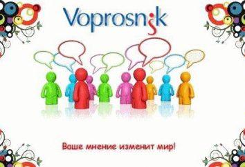 """""""Fragebogen"""": Feedback über die Website. Voprosnik.ru: Das Ergebnis auf bezahlte Online-Umfragen"""