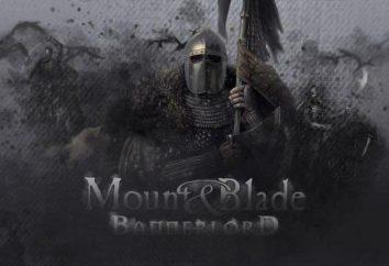 Mount and Blade 2: Bannerlord: Wymagania systemowe i zapowiedź gry